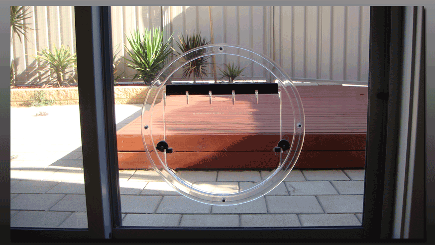 Hartley Glass Adelaide Pet Doors